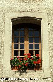Window w/flowers